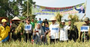 Zaiful Bokhari Membuka Panen Raya Dan Janji Perbaiki Akses Desa