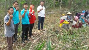 Padat Karya Tunai Desa Mukti Jaya di Dominasi Ibu -ibu