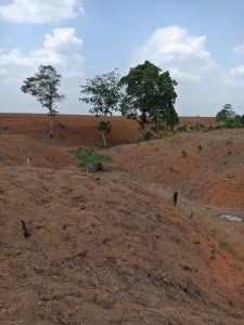 Kerusakan DAS di Kecamatan Kotabumi Utara Rusak Parah