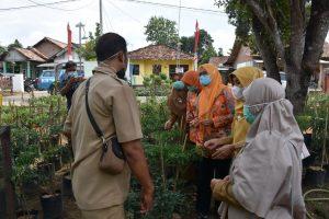 Tindak Lanjut Arahan Provinsi , Pembinaan Kesrak di Kecamatan Metro Utara