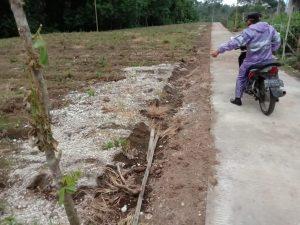 Rabat Beton Pekon Tanjung Raya di Duga Kuat Menggunakan Batu Sampah
